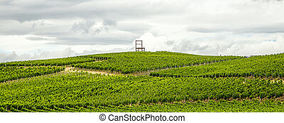 Vineyards of the Kaiserstuhl region, Baden-Wurttemberg,...
