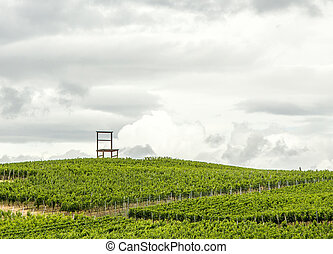 Vineyards of the Kaiserstuhl region, Baden-Wurttemberg,...