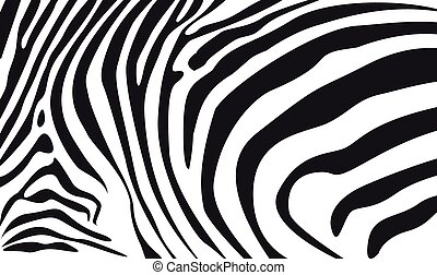 zebra skin textured background