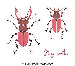 Male and female stag beetle, Lucanus cervus, Stag-beetle