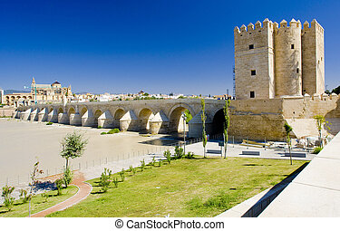Roman bridge with Calahorra tower, Cordoba, Andalusia, Spain