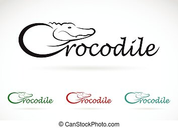 Vector design crocodile is text on a white background