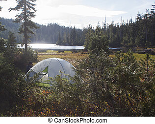 Tenting, en, soltero, lago, parque,