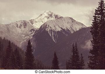 Mountains  in Washington, USA