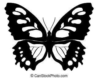 butterfly - outline illustration of butterfly