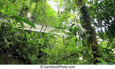 Man on hanging bridge - Man walking on hanging bridge at...