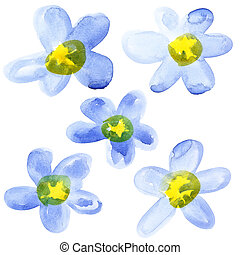Yellow - blue watercolor flowers isolated over the white...