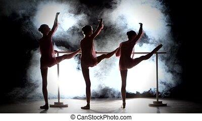 ballet girls in dress posing at ballet barre, smoke