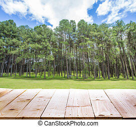 Wood table with blur Pine forest background