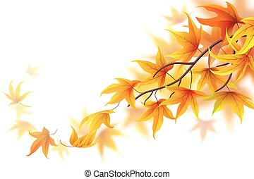 Autumn frond - Autumn branch with falling maple leaves on...