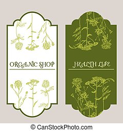 Vector template with hand-draw wild flowers and herbs....