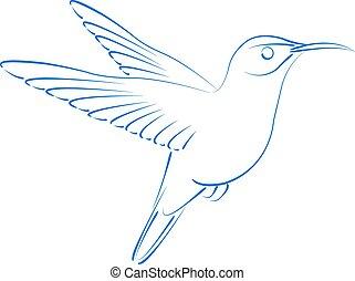 Sketched hummingbird colibri. - Sketched hummingbird colibri...