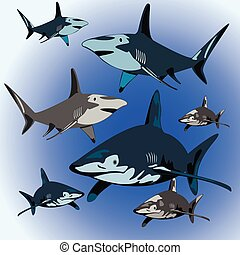 sharks - a flock of aggressive sharks in the ocean...
