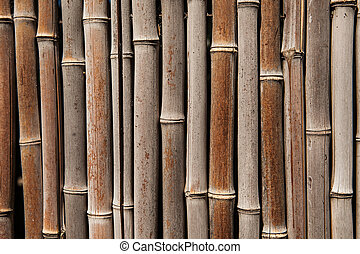 Bamboo fence background - Close up of bamboo fence texture...