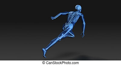 3D Concept of Human Male Body and Skeleton