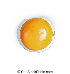 yolk in eggshell