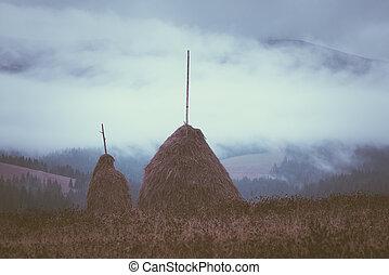Rick dry hay
