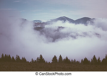 Morning fog in the mountains - Autumn landscape with fog in...