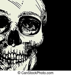 Vector Skull Drawing - Vector Illustration of a Black and...