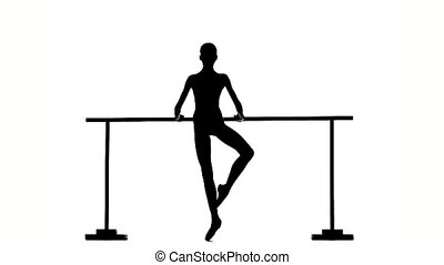 Beautiful ballerina girl dancer silhouette slow motion -...