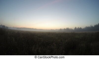 Timelapse of foggy sunset. Field and wood.