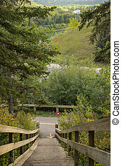 View to the North Saskatchewan river valley,Edmonton - View...