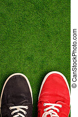 Colorful shoes on a green grass background with space for...