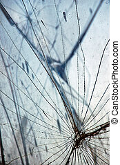 glass fragments - Shattered glass fragments surface texture....