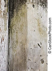 moldy wall - Mold growth and peeling paint on the wall of an...
