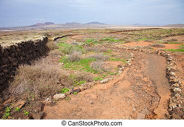 Northern Fuerteventura, pedestrian path - Northern...