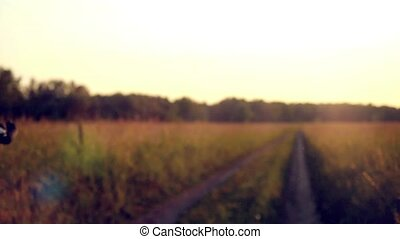 Biker riding on cycling road through summer agricultural...