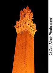 Night photo. Torre del Mangia tower