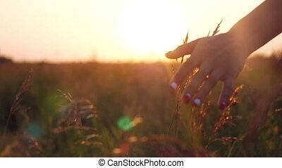 Female hand touching grass and young woman enjoying nature...