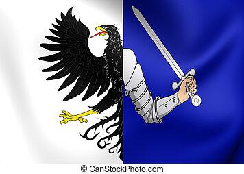 Flag of Connacht Province, Ireland - 3D Flag of Connacht...