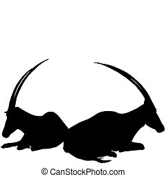 Two sitting antelopes silhouettes on white background