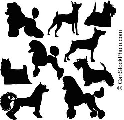 Silhouettes of decorative dogs - Set of silhouettes of...