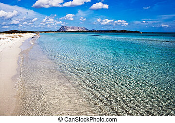 Sardinia - Clear sea and sandy beach La Cinta, Sardinia,...
