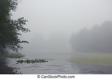 Dense Fog on Lake