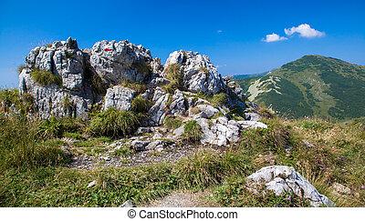 Hill - Velky Krivan - in range Mala Fatra, Slovakia
