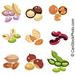 Collection of Nuts and Beans