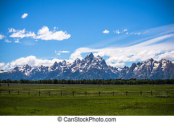 Grand Tetons behind a picket fence and field