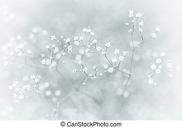Small Defocused White Flowers with Vintage Effect