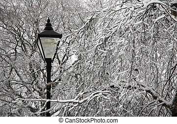 street lamp - snowy street lamp trees covered by snow