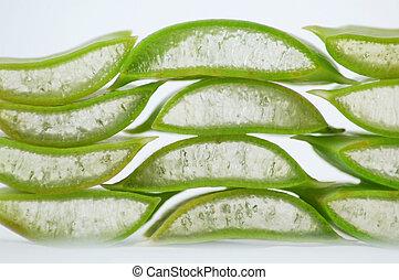 Aloe vera - Sliced aloe vera plant