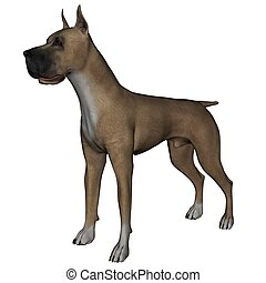 Great Dane - 3D rendered great dane dog on white background...