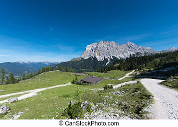 alpine chalet landscape with green meadow and huge mountain