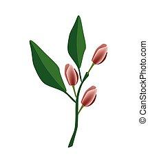 Port Wine Magnolia Flower or Magnolia Figo Flower -...