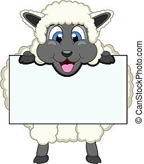 Sheep with white board - colourfull