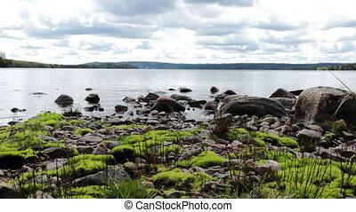 Moss at the lake - Slider shot at a lake