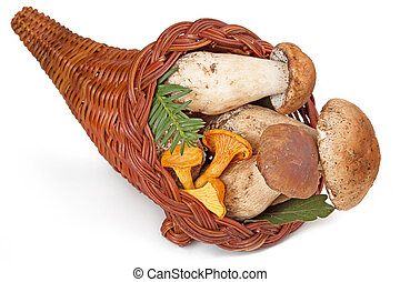 cornucopia filled with fresh ceps and chanterelles